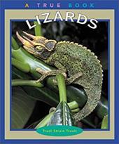 Lizards 1669673