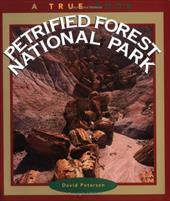 Petrified Forest National Park 1668634