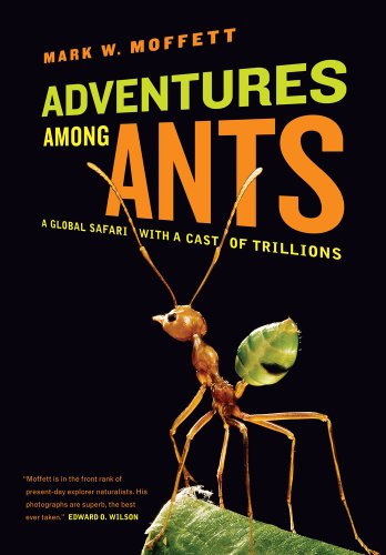 Adventures Among Ants: A Global Safari with a Cast of Trillions 9780520271289