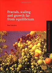 Fractals, Scaling and Growth Far from Equilibrium