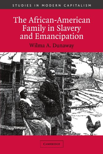 The African-American Family in Slavery and Emancipation 9780521012164