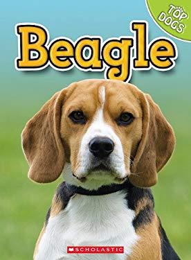Beagle 9780531249314
