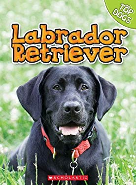 Labrador Retriever 9780531249338