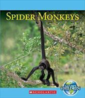 Spider Monkeys (Nature's Children) 21755205