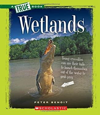 Wetlands 9780531205518
