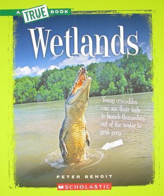 Wetlands 9780531281000