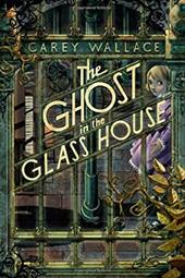 The Ghost in the Glass House 21221173