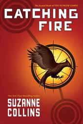 Catching Fire 10695963