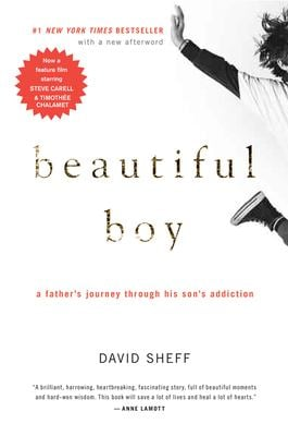 Beautiful Boy: A Father's Journey Through His Son's Addiction 9780547203881