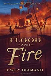Flood and Fire 12039357