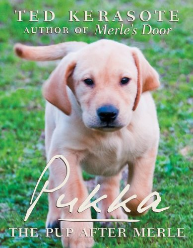 Pukka: The Pup After Merle 9780547386089