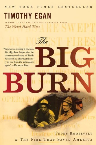 Big Burn : Teddy Roosevelt and the Fire That Saved America