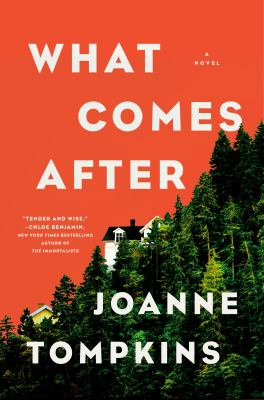 What Comes After: A Novel
