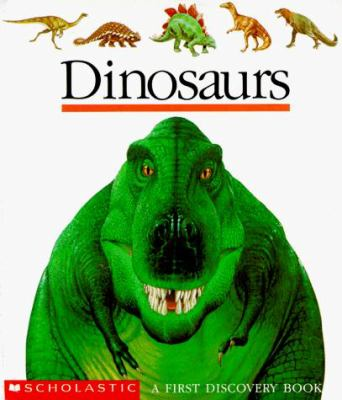Dinosaurs First Discovery Books