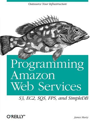 Programming Amazon Web Services: S3, EC2, SQS, FPS, and SimpleDB 9780596515812