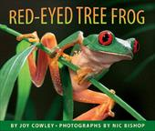 Red-Eyed Tree Frog 2131475