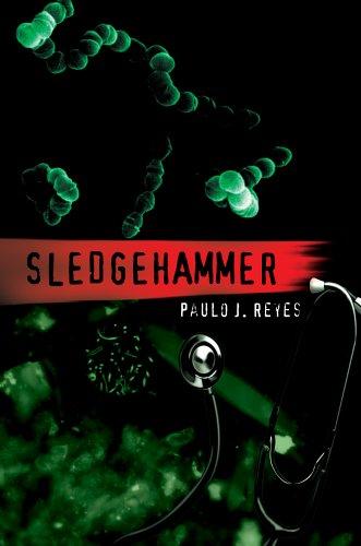 Sledgehammer 9780595669844