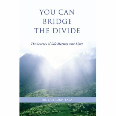 You Can Bridge the Divide: The Journey of Life Merging with Light 9780595416158