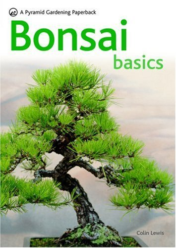 Bonsai Basics 9780600619109
