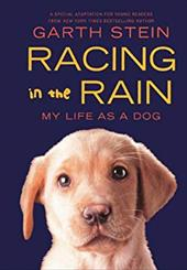 Racing in the Rain: My Life as a Dog 13795733
