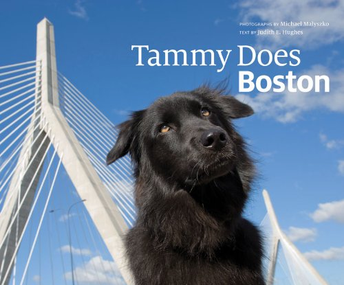 Tammy Does Boston 9780615318066