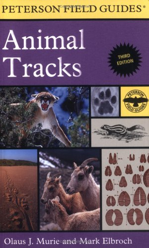 A Field Guide to Animal Tracks 9780618517435