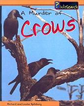 A Murder of Crows 2292222