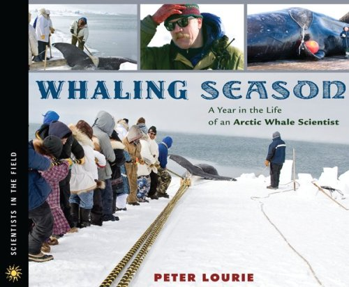 Whaling Season: A Year in the Life of an Arctic Whale Scientist 9780618777099