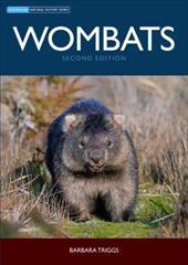 Wombats 2377024