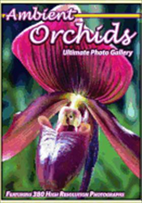 Ambient Orchids: Ultimate Photo Gallery