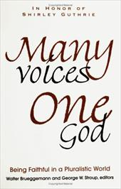 Many Voices, One God: Being Faithful in a Pluralistic World 2385970