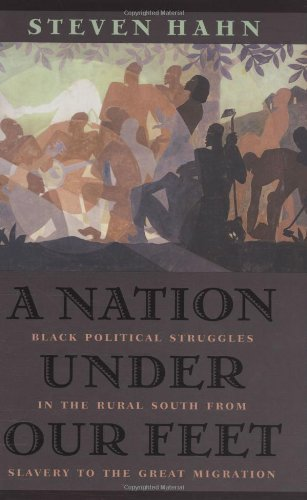 A Nation Under Our Feet: Black Political Struggles in the Rural South from Slavery to TheGreat Migration 9780674011694
