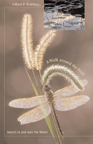 A Walk Around the Pond: Insects in and Over the Water 9780674022119