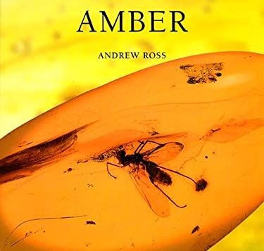 Amber 9780674017290