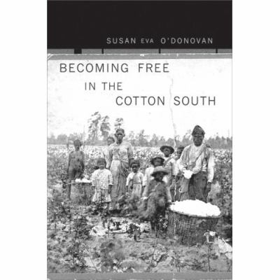 Becoming Free in the Cotton South 9780674024830