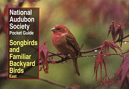NAS Pocket Guide to Songbirds and Familiar Backyard Birds: Eastern Region: East 9780679749264