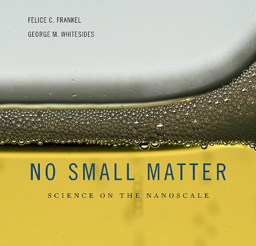 No Small Matter: Science on the Nanoscale 9780674035669