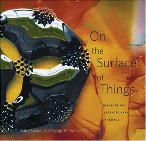 On the Surface of Things: Images of the Extraordinary in Science 9780674026889