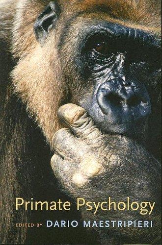Primate Psychology 9780674018471