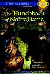 The Hunchback of Notre Dame 2492181