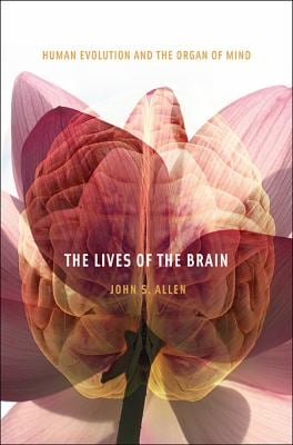 The Lives of the Brain: Human Evolution and the Organ of Mind 9780674035348