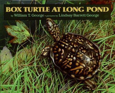 Box Turtle at Long Pond 9780688081843