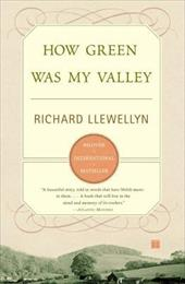 How Green Was My Valley 2503137
