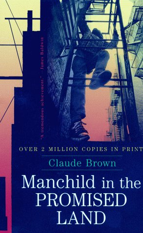 Manchild in the Promised Land 9780684864181