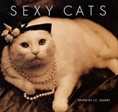Sexy Cats 2527598