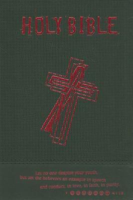 Teen Bible-NRSV 9780687657131