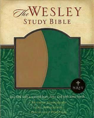 Wesley Study Bible-NRSV 9780687645039