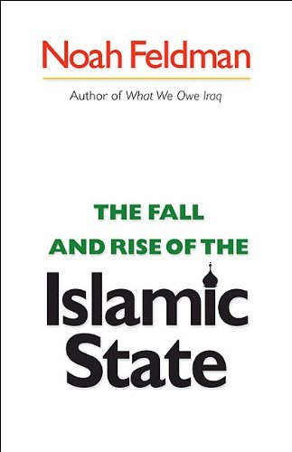 The Fall and Rise of the Islamic State 9780691148045