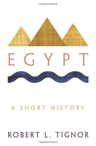 Egypt: A Short History 9780691153070