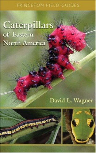 Caterpillars of Eastern North America: A Guide to Identification and Natural History 9780691121444